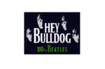 heybulldog