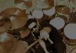 Batteur cherche groupe rock/prog/metal