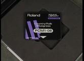 Vends carte rom PCM1-08 Country etc