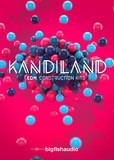 Big Fish Audio Kandiland