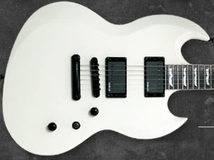 ESP Viper 301