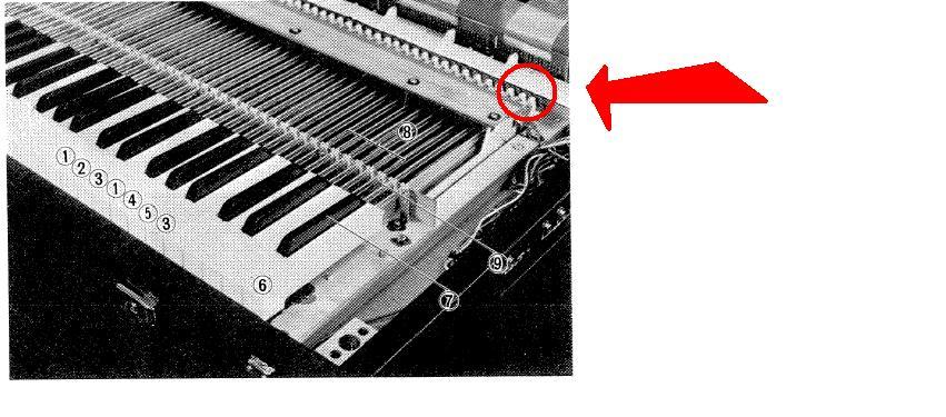 https://img.audiofanzine.com/image.php?lang=fr&identifier=image&size=normal&module=user&userPhoto_id=255830