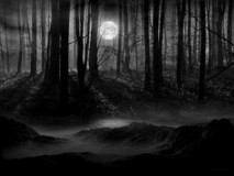 jacker - In The Dark