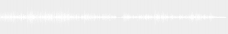 Venom audio horns