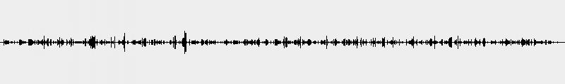bass bddi  6 riff6 boogie