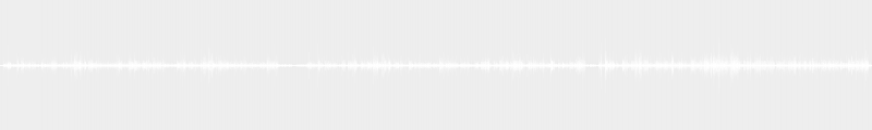 Noguera YC 5 slap 2 micros DI SWR ST220