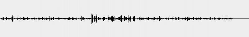 Signal   Echolalian Harpist