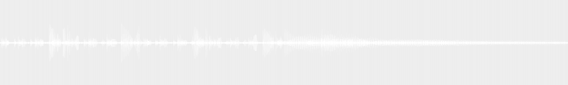 FENDER Jazz Bass Japan 62 Ash Walnut - Jeu aux doigts, micro chevalet et tonalité à fond
