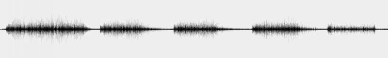 CZ1000 voice