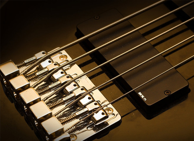 5+ string bass guitars