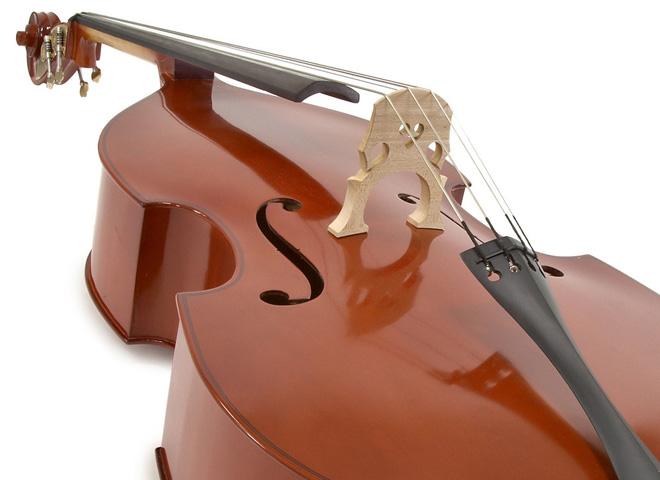Acoustic Double Basses