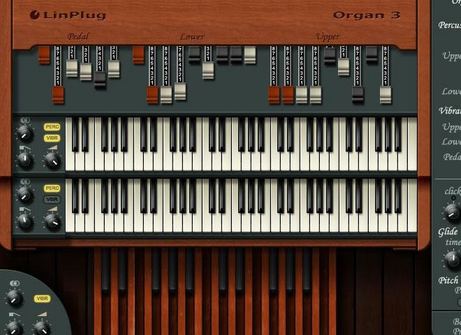 Virtual Organs