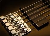 Basses électriques 5 cordes et plus