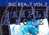 Big Beat / Industrial Samples