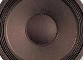 """Haut-parleurs à cône 10"""" (25 cm)"""