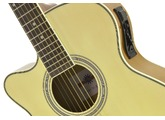 Left-Handed Acoustic-Electric Guitars