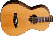 スチール弦ギター
