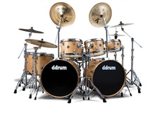 ドラム&パーカッション