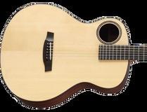 Autres guitares acoustiques