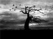 Dark Ambient/Noise