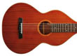 Other Acoustic Guitars