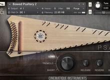 Otros instrumentos de cuerdas frotadas