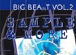 Samples Big Beat / Indus