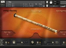 Virtual flutes
