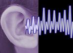 Traut Euren Ohren
