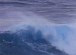 Auf der Suche nach der perfekten Welle
