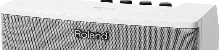 Roland Cube Lite Review