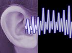 Trust Your Ears