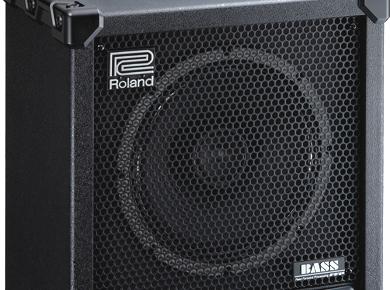 Roland CB120XL Cube Bass Review