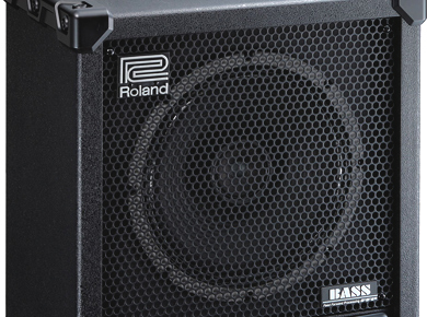 Roland CB120XL Cube Bass Review