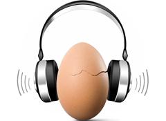 Understanding your Ears