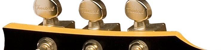 comment choisir ses m caniques pour guitare lectrique audiofanzine. Black Bedroom Furniture Sets. Home Design Ideas