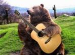 Vidéos sur les animaux qui chantent ou jouent d'un instrument