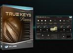 Test du VI Labs True Keys