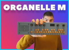 Organelle M, la boîte magique ?