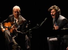 Introduction au flamenco