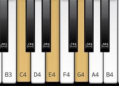 Les notes caractéristiques dans le système modal