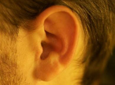 Dossier sur les protections auditives