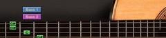 Test du Ilya Efimov Acoustic Guitar Bundle