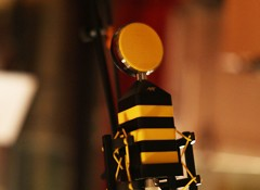 Test des micros Neat Microphones King Bee & Worker Bee