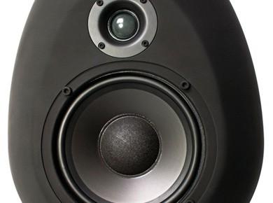 Test des sE Electronics Munro Egg 150