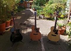 Test des trois guitares électroacoustiques Cort Grand Regal : GA5F, GA5F-MD, et GA5F-BW