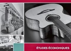 Dossier sur le marché de la facture instrumentale en France