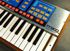 Test du synthétiseur Moog The Source