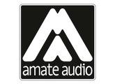 Ampli AMATE AUDIO TP 2000