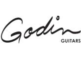 guitare Godin Icon II
